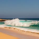 eve waves646
